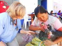 Consult Peru 2012