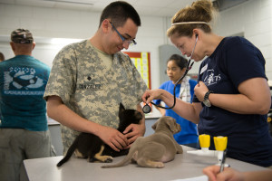U.S. Army Spc. Martin Gonzalez and World Vets volunteer Dr. Amanda Hedman give two puppies a physical exam at a Pacific Partnership 2013 veterinary civic action project.