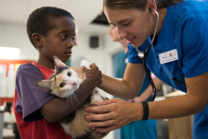 "Dr. Kristin Camp, a World Vets volunteer veterinarian, gives a cat named ""Coffee"" a pre-operation physical exam before being neutered at the free spay and neuter clinic held at the College of the Marshall Islands during Pacific Partnership 2013."