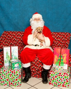 """Nico"" gets his picture taken with Santa"