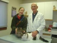 Naiya, Bacchus, Lindsay (owner) and Dr. Thomas