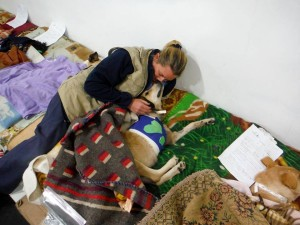 World Vets volunteer Dr Marian Boden (who performed the surgery) snuggles with Trixie in recovery