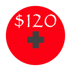 $120                                        Can help purchase critical supplies for disaster relief situations.
