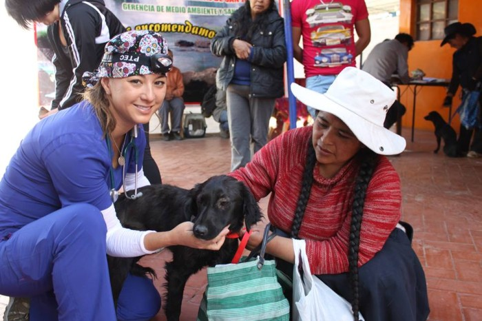 World Vets Continues Small Animal Project in Peru