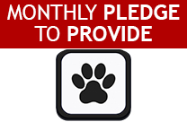 Provide Pledge