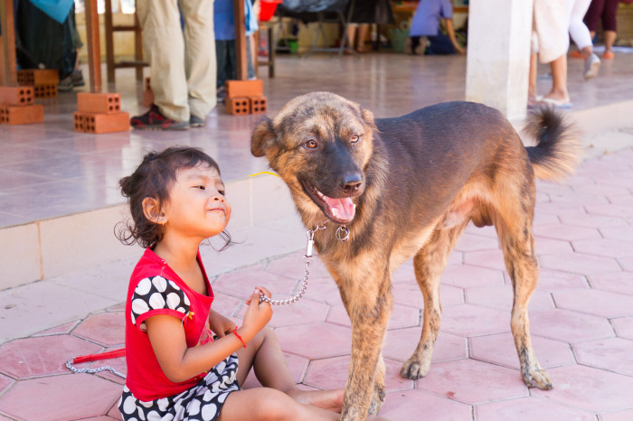 World Vets Aids Animals in Cambodia