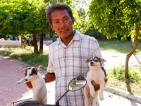 WorldVets Siem Reap Clinic