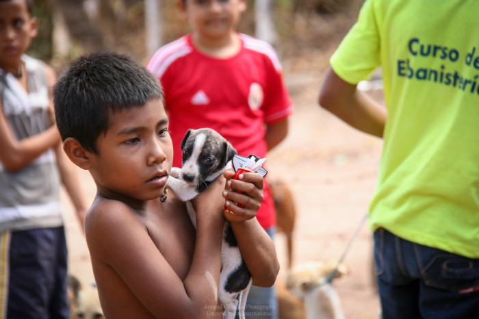 Support Equine & Small Animal Care in Nicaragua