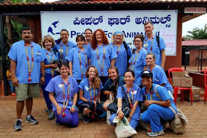 A World Vets First: Veterinary Pilot Project Held in India