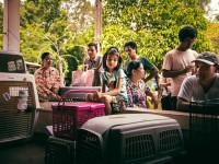 WorldVets_2016_Cambodia_09