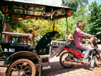 WorldVets_2016_Cambodia_55