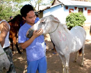 Calvin working with a horse in need during the World Vets International Veterinary Medicine Program (Dec. 2016)