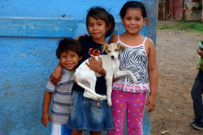 One Easy Way to Support the Animals of Granada