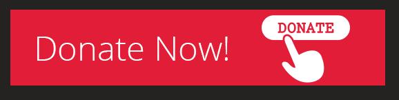 donateNow_button