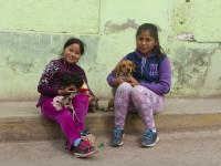 World Vets_Cusco_SanJeronimo_001