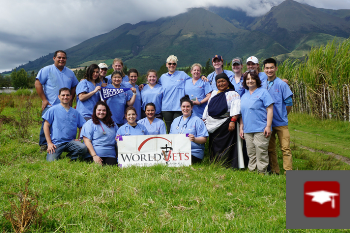 2019 Teaching/Training Volunteer Opportunities