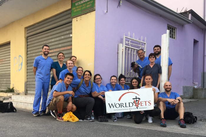 World Vets Continues its Commitment to Animals in Albania