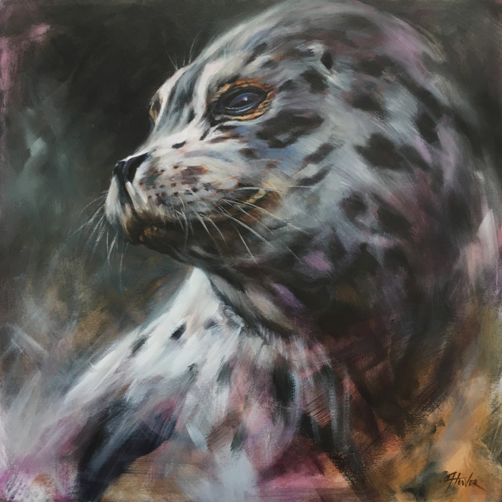 harbor seal 24 x 24 by aimee hoover