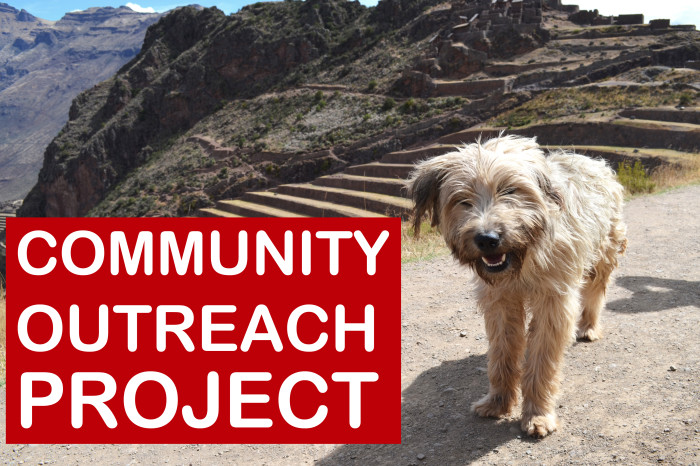 Helping Rural Communities Access Veterinary Care | Peru 2020